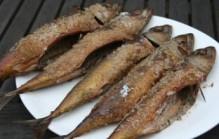 Makreel roken of vis roken in het algemeen