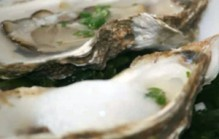 Oesters met mojito dressing
