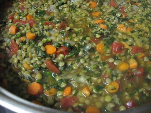 Linzenstoof met spinazie