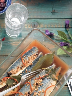 Ingelegde makreel