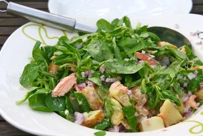 salade met gerookte zalmforel