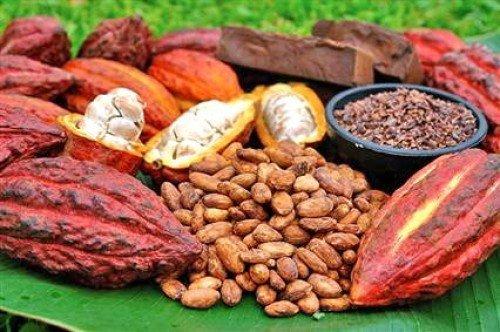 Heerlijke desserts met rauwe cacao