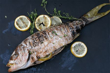 Zo gezond als een vis